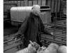 market01 smallholder unloading livestock for auction